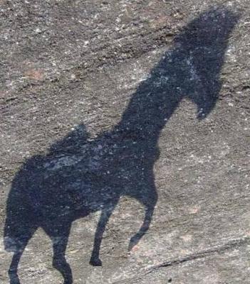 20060805230541-caballos-de-sombra.jpg