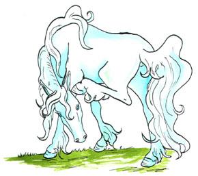20070225014846-unicornio-comun.jpg