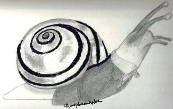 20120826125910-eminencia-gasteropoda.jpg