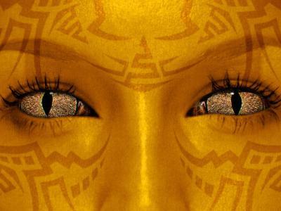 20080617152433-f-fantasy5m-214817b.jpg