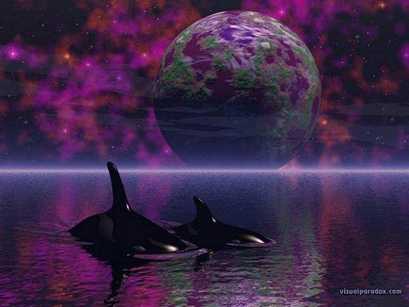 20130910211834-ballenas-del-mar-infinito.jpg