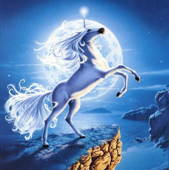20150101233210-los-unicornios-lunares.jpg
