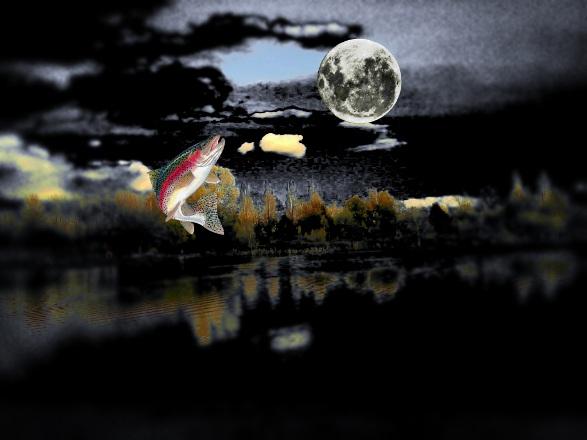 20170417015713-la-trucha-y-la-luna.jpg