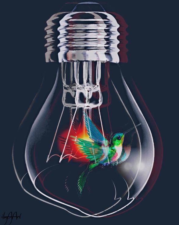 20180303214549-los-colibries-electricos.jpg