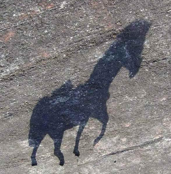 20180502030042-los-caballos-de-la-sombra.jpg