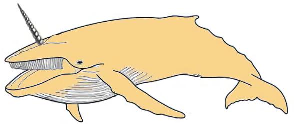 20180514011133-las-ballenas-doradas.jpg