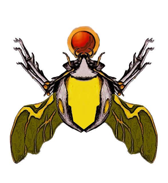 20180524025217-los-escarabajos-dorados.jpg