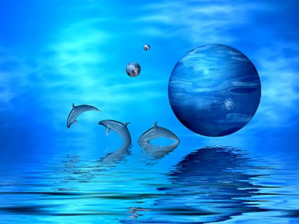 20180608010518-el-plano-astral-de-los-delfines.jpg