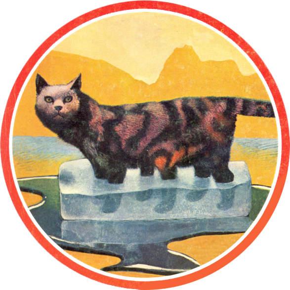 20191025175553-los-gatos-tetradimensionales-o-cronogatos-por-karel-thole.jpg